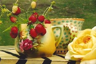 Erdbeeren rosen poc