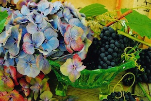 blue hydrangea grapes trauben gruene schale poc
