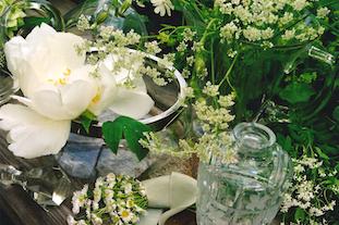 daisies peonies vase pov