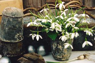 easter flowers tin pov