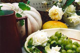gooseberries roses gourds pov