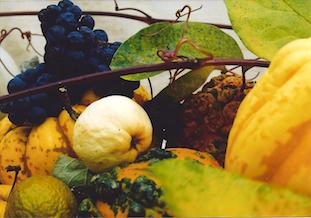 gourds grapes kuerbisse trauben apfel pov