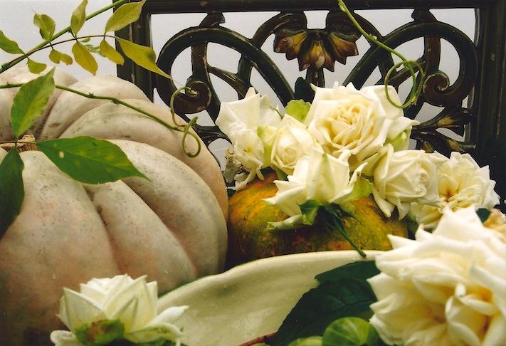 gourds roses rosen kuerbisse poc
