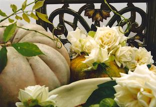 gourds roses rosen kuerbisse pov