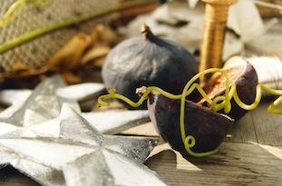 purple christmas fig poc