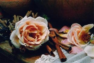 rose coburg cinnamon poc