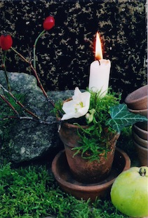 rosehips ivy candle hagebutte poc