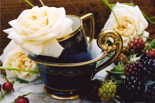 rosehips wild roses Mokkatassen in coffeecup pov