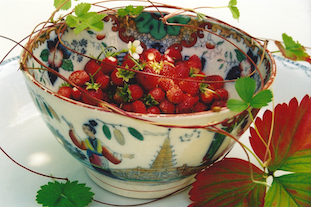 strawberries bowl erdbeeren pov
