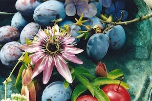 weintrauben grape povs