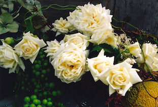 white roses cantaloupe pov